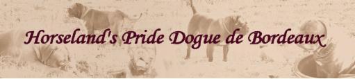 Horselands Pride Dogue de Bordeaux